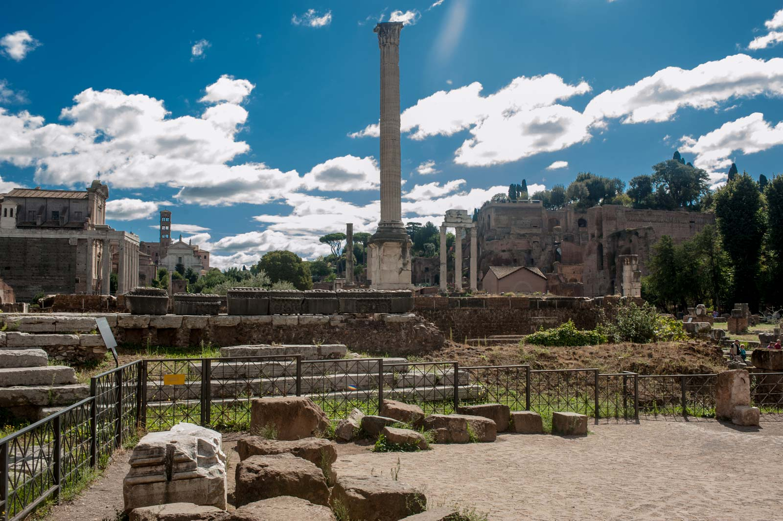 Enjoy Rome - Colosseum Forum and Palatine hill with Arena Floor Access semi-private tour